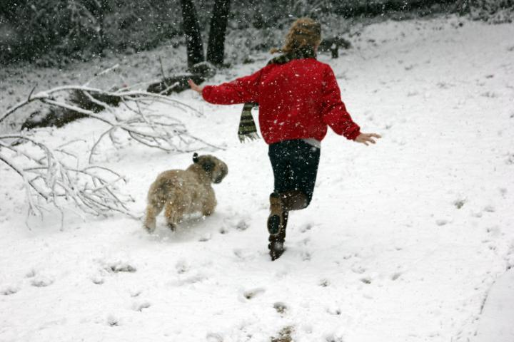 Mattie (Soft Coated Wheaten Terrier) and I had such fun running through the beautiful snow!