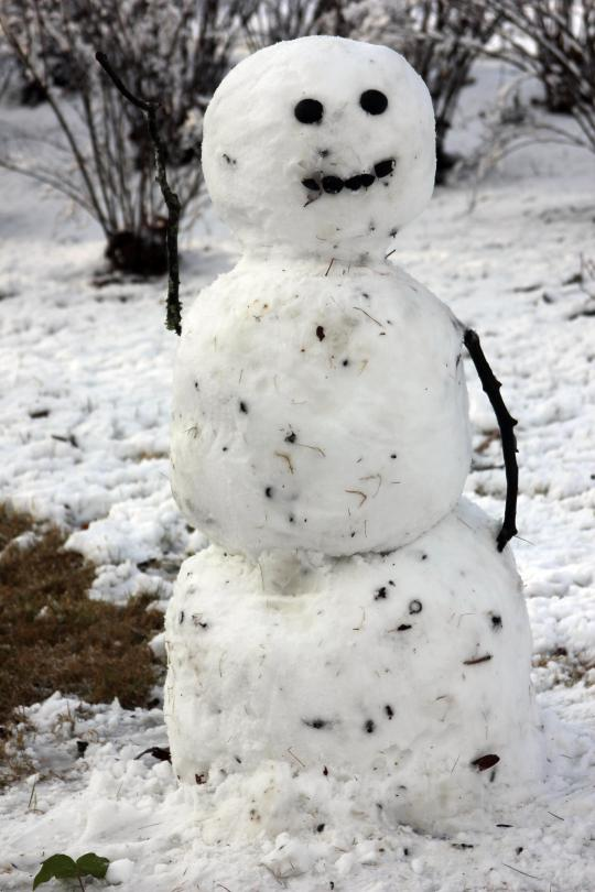 My glamorous snowman is super sassy as it waves to people from the front yard haha:)