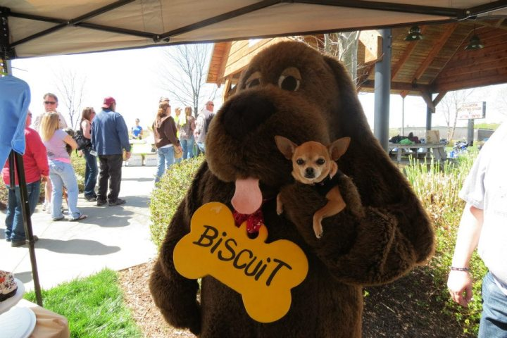 Biscuit from The Biscuit Foundation with Muchie! What a precious little dog! Oh, the VIP is a sucker for adorable doggies!