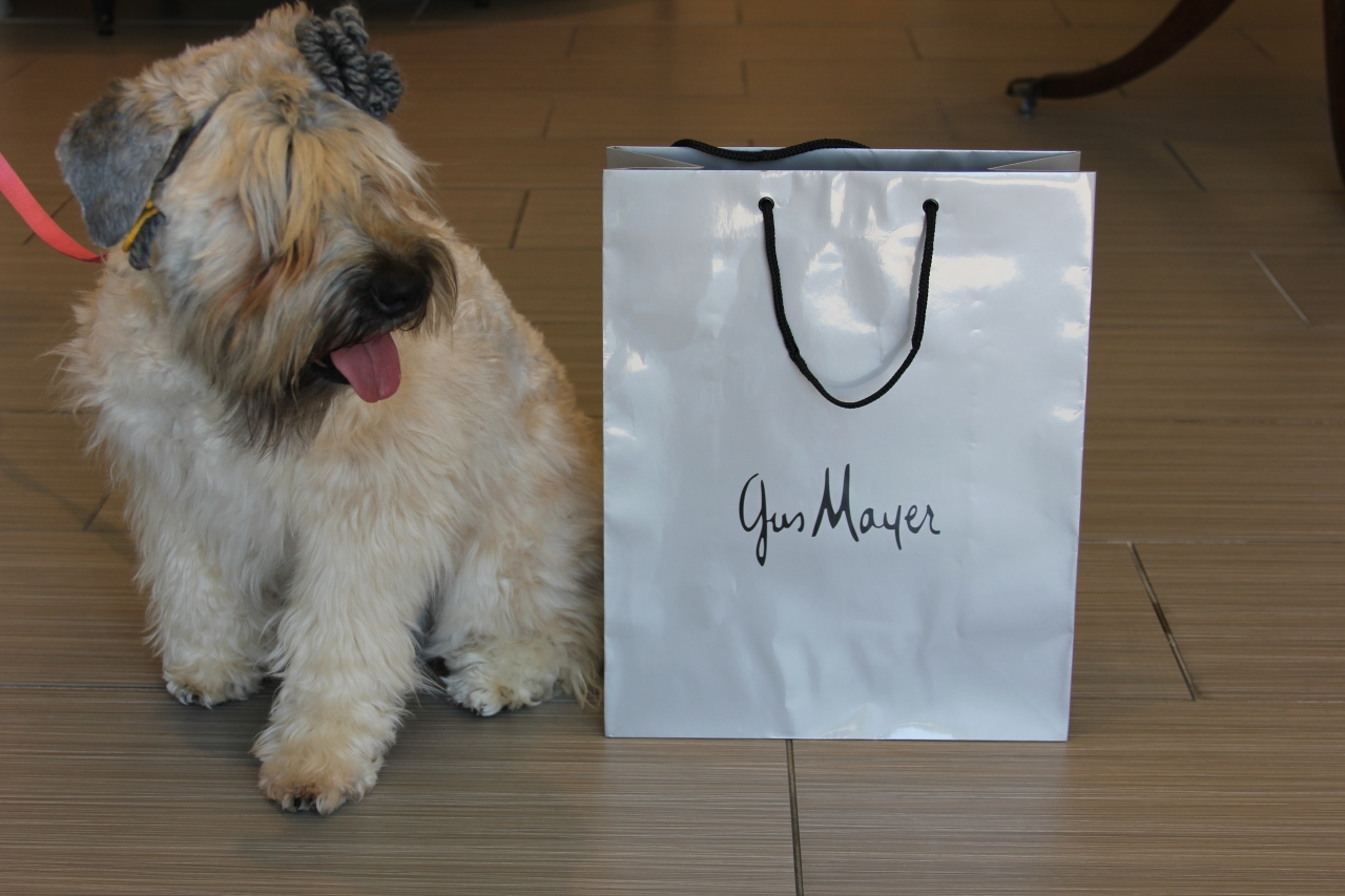 Even Mattie loves shopping trips to Gus Mayer!