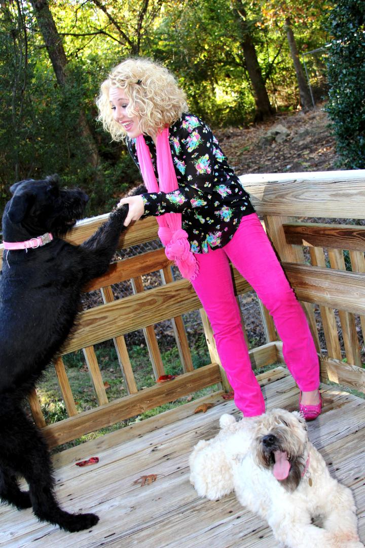 Oh, how I adore my Giant Schnauzer sweetheart, Ziva. Man's best friend? I think they meant girl's best friend *wink*