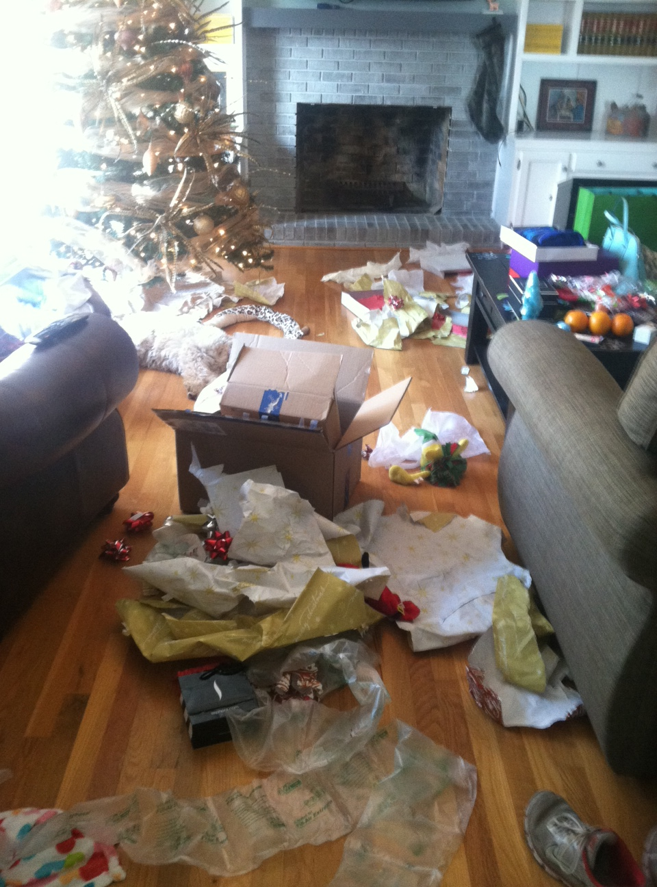The Aftermath of Christmas morning at the Hathorn House haha