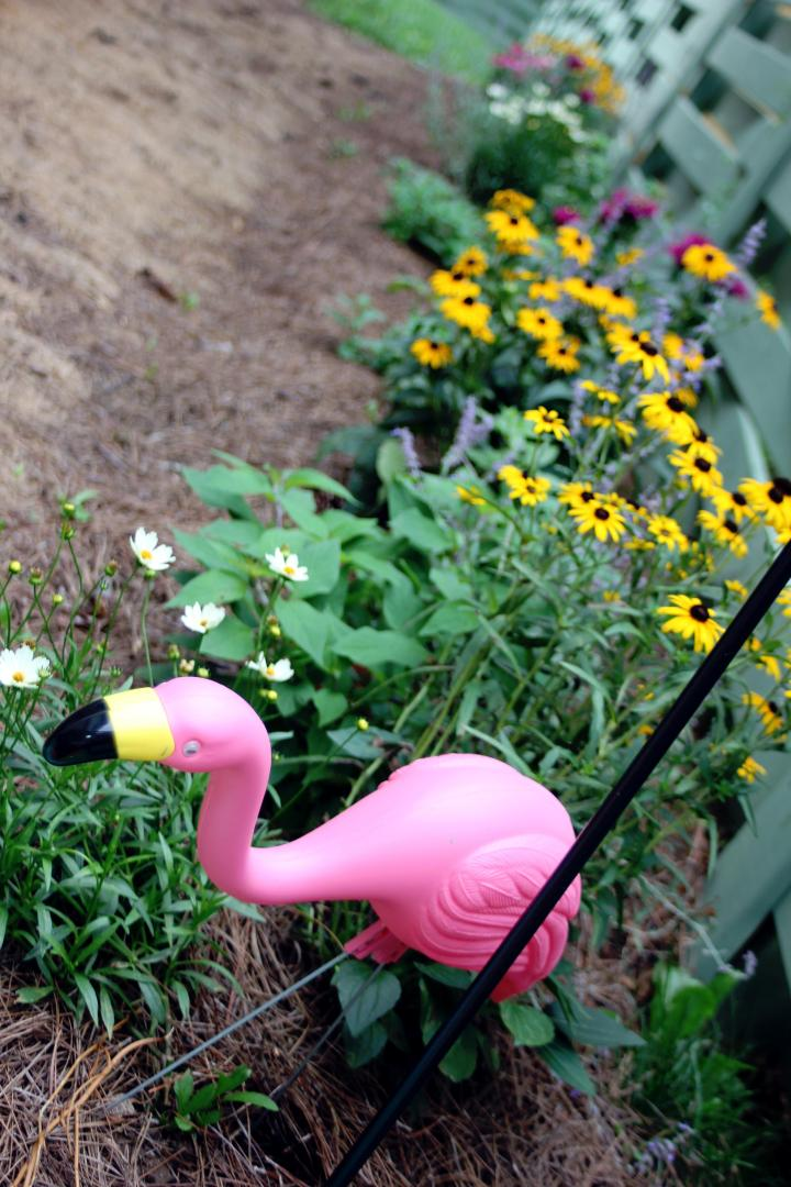 Of course, I had to add a fun yard flamingo *wink*