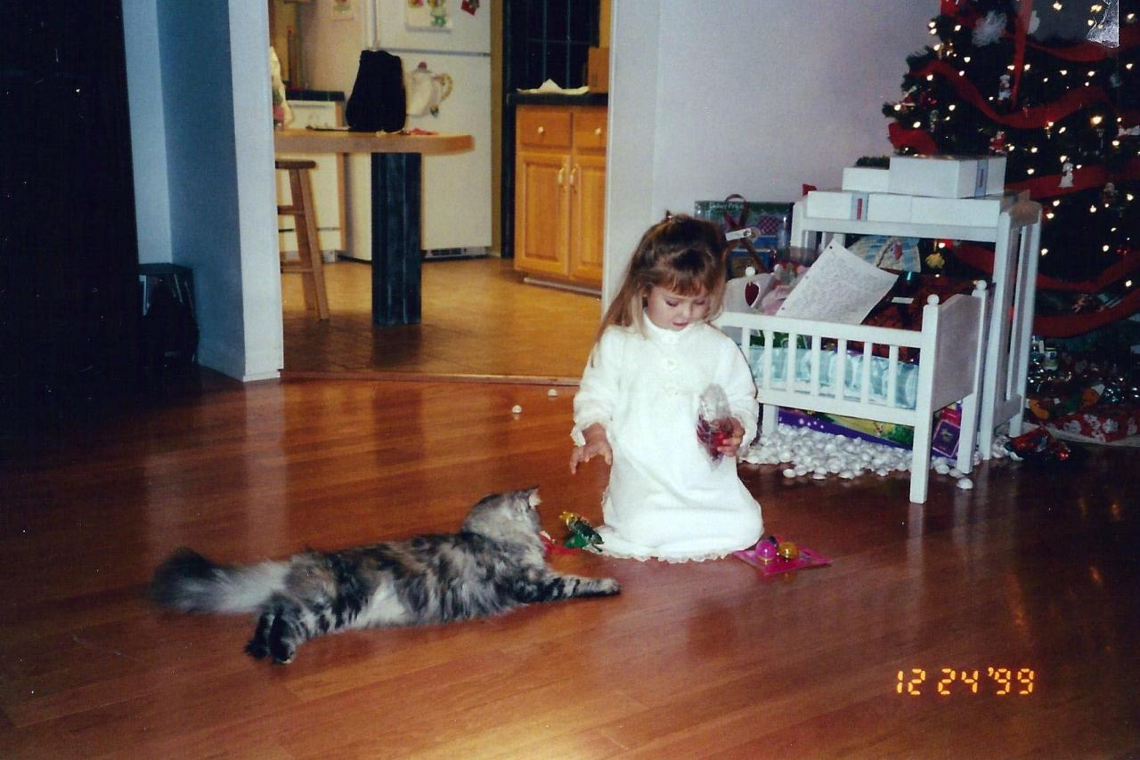 The only cat I ever truly loved--Gracie!