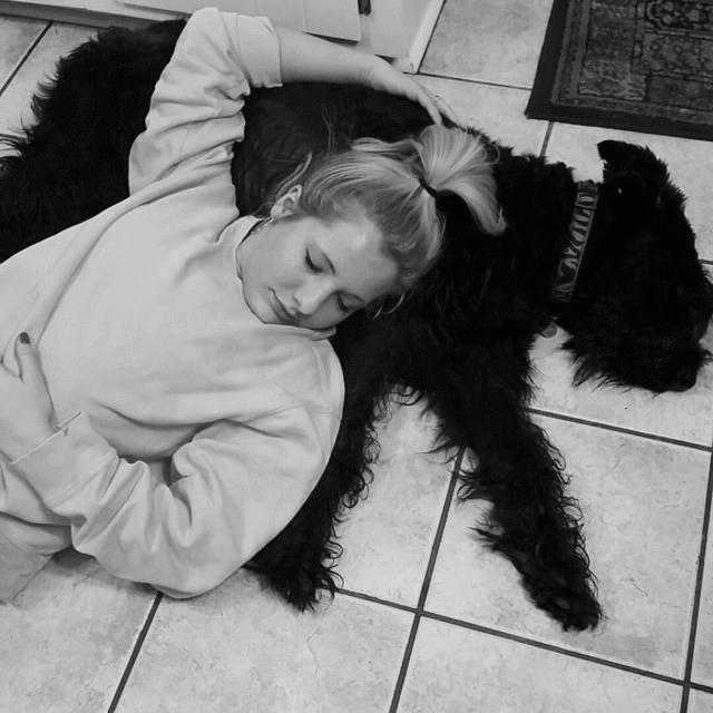 Don't we look so peaceful and cute in black and white *wink* Oh, how I love this dog <3 #ProudGiantSchnauzerParent