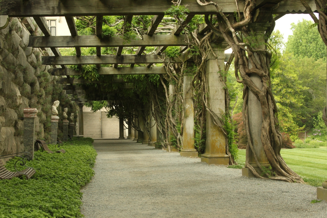 Biltmore Travel And Tours