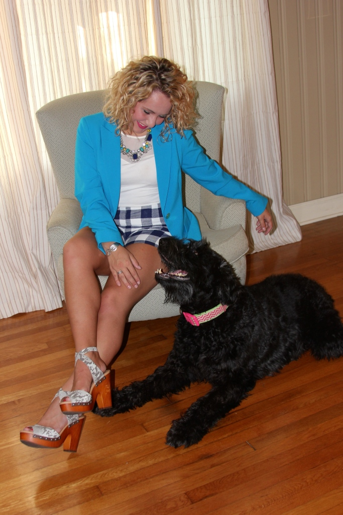 *CRAZY DOG LADY ALERT* I just love it when my precious Giant Schnauzer sweetheart, Ziva, pops in for photos. She is often camera shy; however, she is always searching for love and attention *wink*
