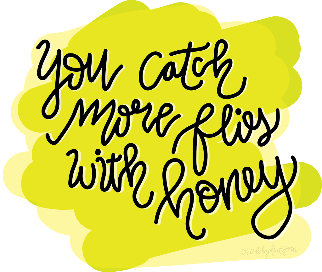 you catch more flies with honey quote
